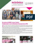 Boletín electrónico ENEO mayo 2013.pdf