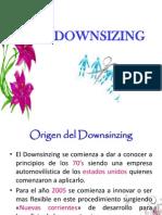 downsinzing-110511104945-phpapp01.pptx