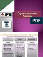 3. Rganos Electorales Federales[1]
