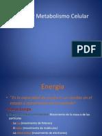 Energía y Metabolismo Celular