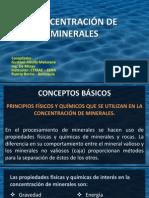 Concentracion de Minerales- Conceptos Basicos