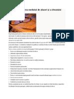 Аnaliza şi evaluarea mediului de afaceri şi a climatului investiţional