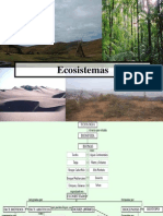 Capitulo I El Ecosistema