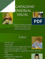 visual 2006ei