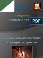 Unidad VI Gases