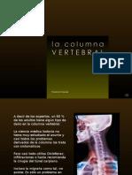 130 Columna Vertebral.[Cr]