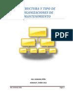 Estructura y Tipos de Organizaciones de Mantto