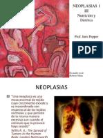 Neoplasias_1_nutricion_2011