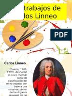 Expo Linneo