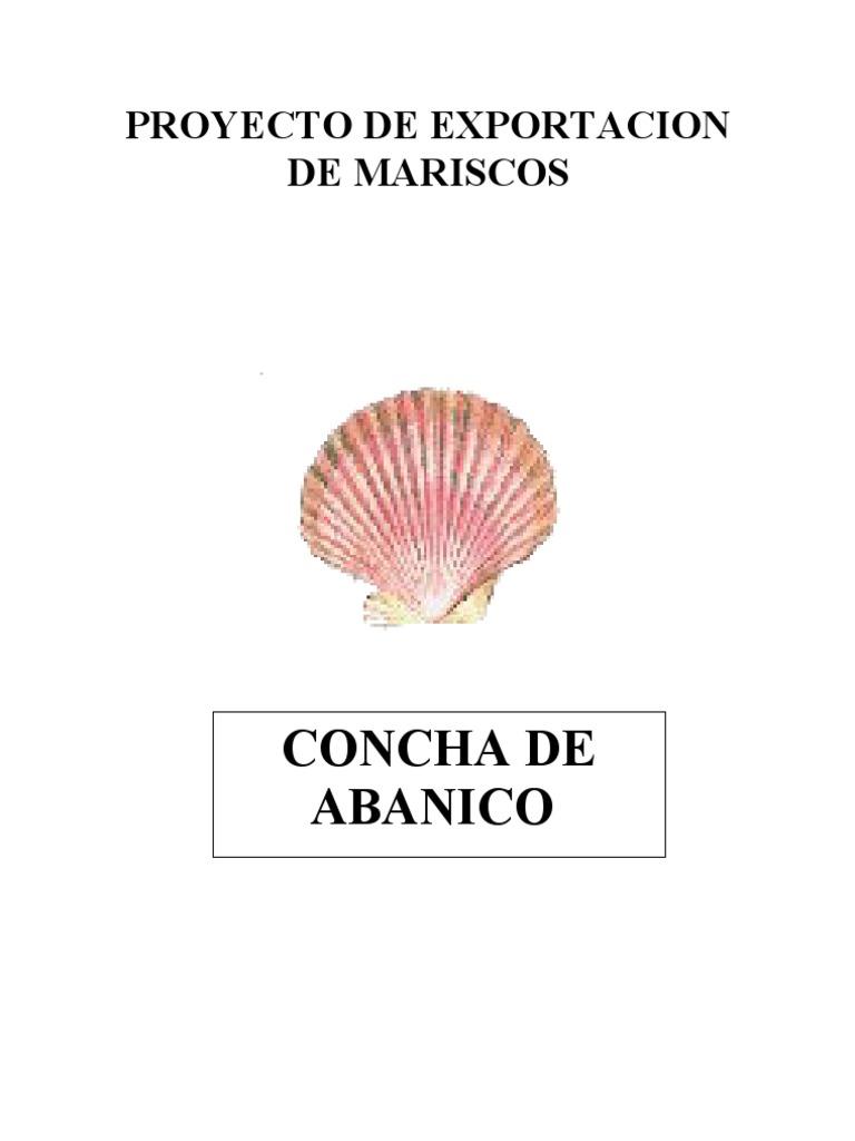 Proyecto de Exportacion de Concha de Abanico[1]