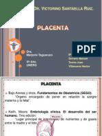 Placenta Listo