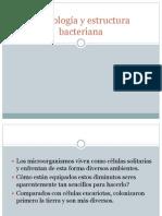 3 Morfología y estructura bacteriana