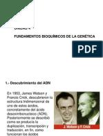 Unidad 4 Fundamentos Bioquimicos de La Genetica