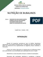Trabalho de Nutrição de Bubalinos - Slides - completo