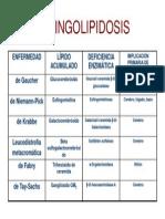 Esfingolipidosis 2008 Medicina[1]
