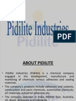 PIDILITE- Brand Bigger Than the Company