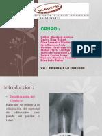 exposicion_endoncia_martes