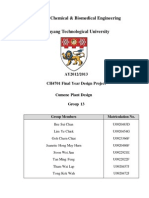 FYDP Final Report G13.pdf