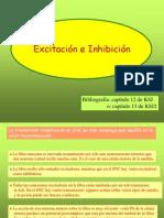 Excitacion e Inhibicion Neuronal