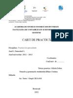 Caiet Practica.pdf