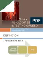 anatomiayfisiologiadelintestinogrueso