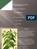 La Ortiga.pptx