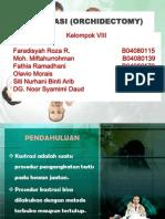 IBKV1-kastrasi (1)