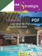 Toulouse_Strategie_01ok.pdf
