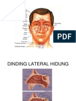 48410647-Anatomi-tht