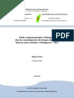Etude comportementale et biologique chez les consommateurs de drogues injectables dans les zones urbaines à Madagascar - 2012