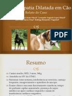 Cardiomiopatia Dilatada em Cão (1)