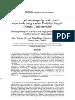 Actividad entomopatógena de cuatro especies de hongos sobre Prodiplosis...