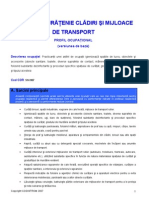 Standard ocupational agent curatenie.pdf