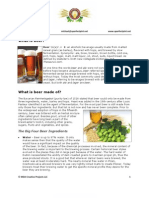 What is Beer - The Basics