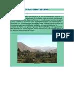 El Valle Viejo de Tacna
