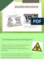Contaminantes Biologicos.docx Terminado