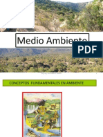 Medio ambiente I.pdf