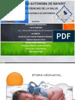 Técnicas de Alimentación Neonatos .pptx