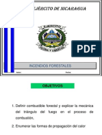 3 Incendio Forestal Conceptos Basicos.