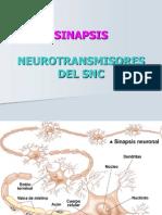 Sinapsis e Impulsos Nerviosos