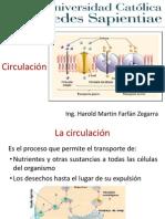 Circulacion_Clase_N°_07