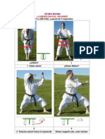 14 Karate Shotokan Heian Nidan