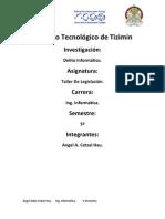 Delitos Informáticos(TL)