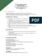El Curriculum Vitae Funcional.doc