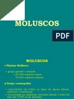 7ª aula de paleontologia (PHYLUM MOLLUSCA)