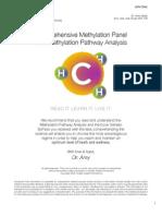 Comprehensive Methylation Panel  with Methylation Pathway Analysis
