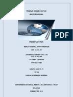 Trabajo_Colaborativo1_102017_79.pdf