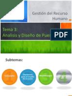 Tema 3 análisis y diseño de puesto