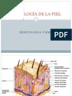 sistema tegumentario.pdf