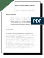Analisis de Transporte de Hidrocarburos en Bolivia